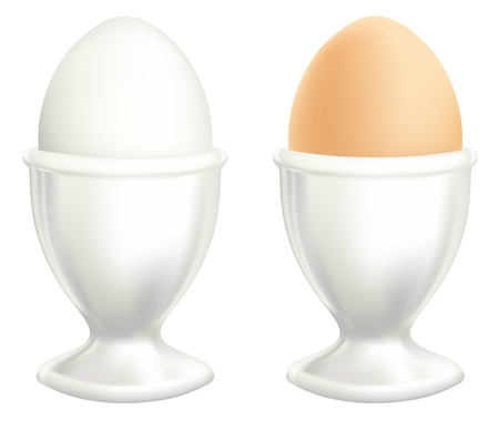 eggcup: White and brown egg in a dish.illustration on white background.