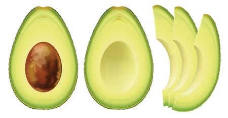 aguacate: Aguacate. La mitad de la fruta y cortar en rodajas. Ilustración vectorial.