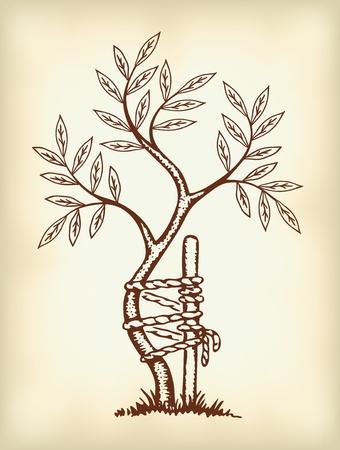 Het symbool van de orthopedie en traumatologie.