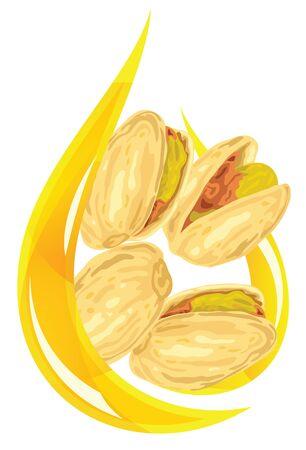 pistachio: Pistachio oil. Stylized drop. Vector illustration. Illustration