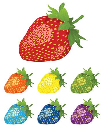 food poison: Strawberry. The berries of different colors of the rainbow. Vector illustration. Illustration