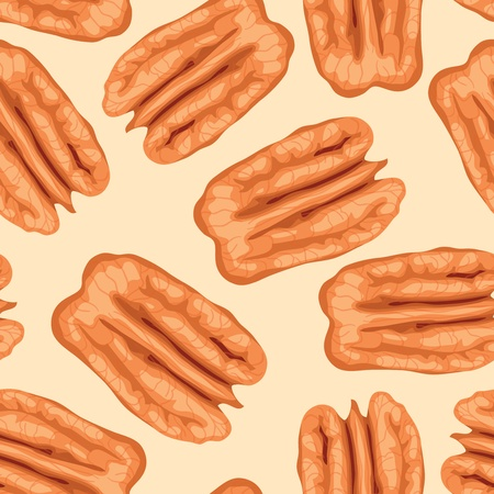 whole pecans: Pecan nuts. Seamless background. Vector illustration. Illustration