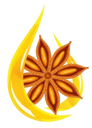 indian spices: Anise oil. Stylized drop. Vector illustration.