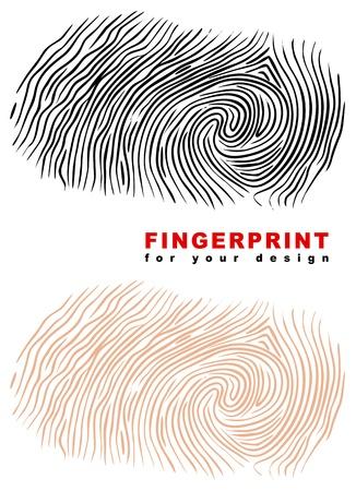 odcisk kciuka: Odcisków palców. Ilustracji wektorowych. Ilustracja