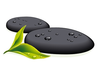 black stone: Two black pebbles with fresh leaf. Vector illustration.