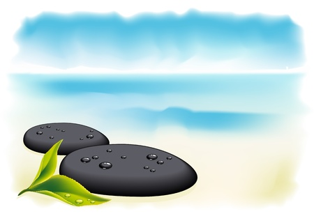 meditation stones: Two black pebbles with fresh leaf. Vector illustration.