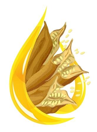 sesame seed: Sesame oil. Stylized drop. Vector illystration. Illustration