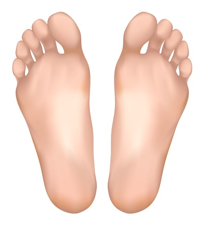 Gezonde voeten. Vector illustratie.