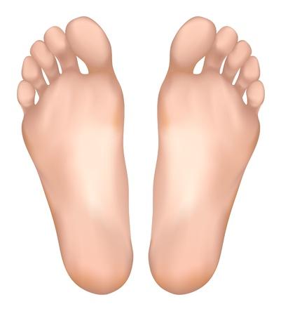 dolore ai piedi: Piedi sani. Illustrazione vettoriale.