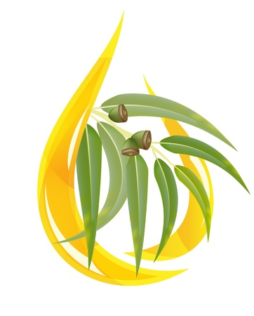 gum tree: Eucalyptus essential oil. Stylized oil drop with branch. Illustration
