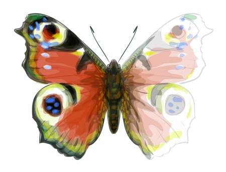 Butterfly Inachis Io. Unfinished Watercolor drawing imitation.  Vector