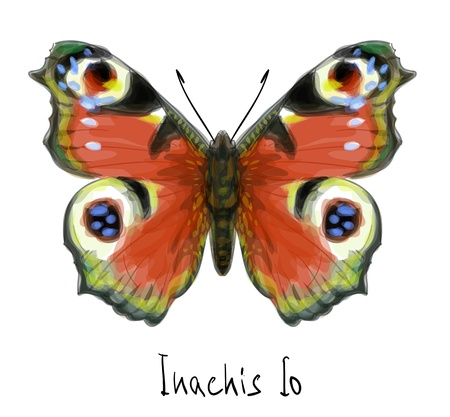 Butterfly Inachis Io. Watercolor imitation. Vector