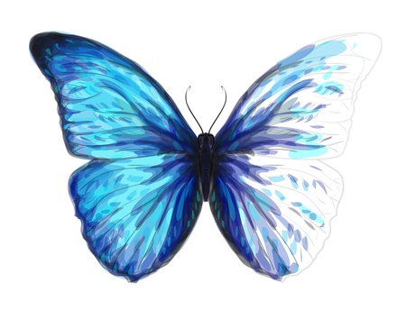 Butterfly  Morpho Anaxibia  Unfinished Watercolor drawing imitation