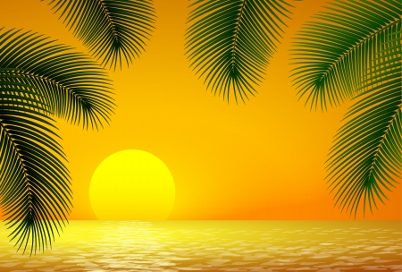 Zonsondergang, zee en palmtak