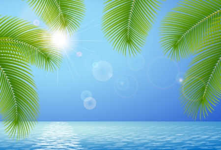 Sunny blue sky, sea and palm branches Vector