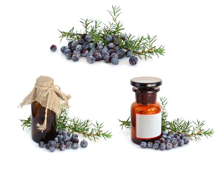 juniper tree: Juniper branch and berries with pharmaceutical bottles.