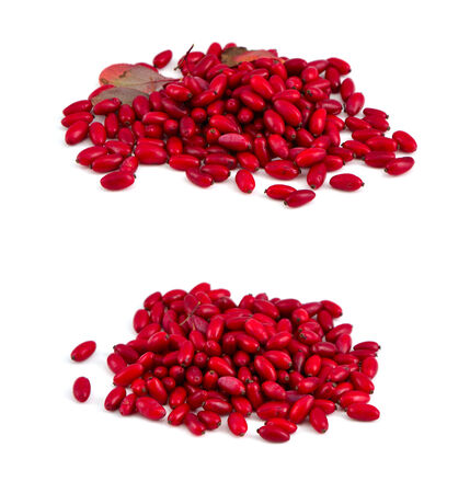 Barberry berry isolated. Stock Photo - 24061448