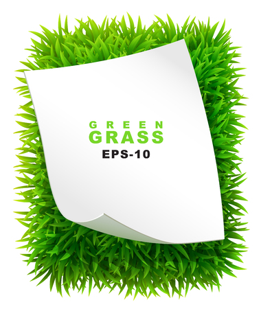 foreground: Grassy rectangle with a clean sheet of paper Illustration