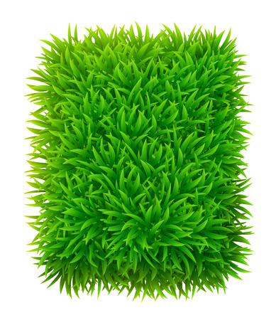 grassy: Grassy rectangle
