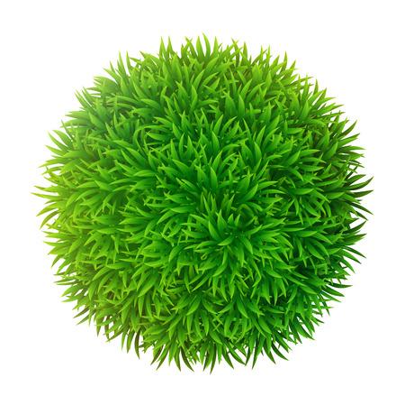 grassy: Grassy sphere