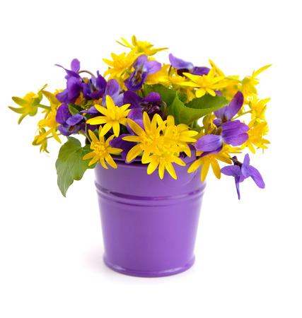 Petit bouquet de fleurs de prairie dans un seau. Isolé sur fond blanc. Banque d'images - 27338649
