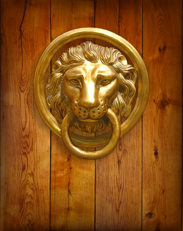 front gate: The door handle - the head of a lion. Vector illustration.