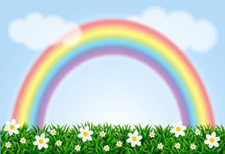 Landscape with a rainbow and camomiles. Vector illustration.