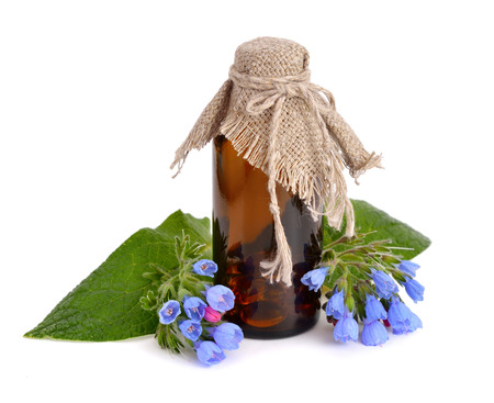 Symphytum (comfrey) with pharmaceutical bottle  isolated photo
