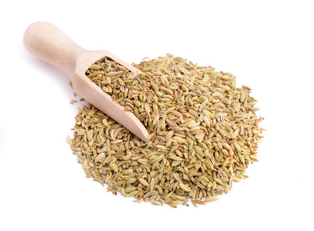 fennel seed: Fennel seeds isolated