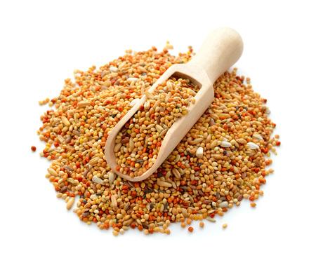 budgerigar: Grain mix for Budgerigar Stock Photo