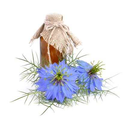 Nigella sativa of venkel bloem, nootmuskaat bloem, zwarte komijn, Romeinse koriander, zwarte komijn, zwarte sesam, blackseed, zwarte komijn, Bunium persicum. Geïsoleerd. Stockfoto