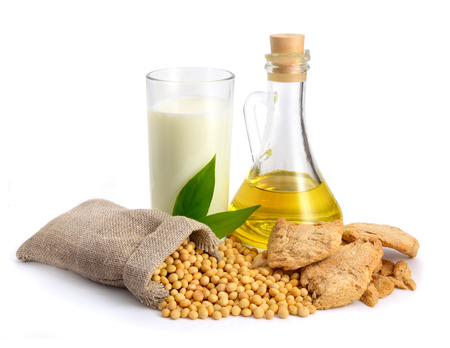 Soybean oil, milk, meat, seed. Isolated on white backgraund.