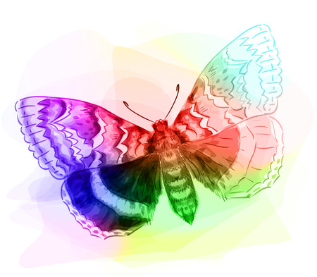io: Butterfly. Iridescen colours. Unfinished Watercolor drawing imitation. Vector illustration. Illustration