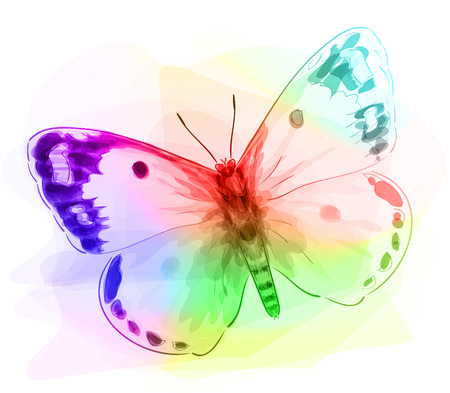Butterfly. Iridescen colours. Unfinished Watercolor drawing imitation. Vector illustration. Vector