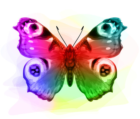 io: Butterfly Inachis Io. Iridescen colours. Vector illustration.