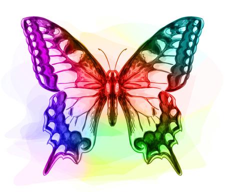 mariposa azul: Mariposa. Colores Iridescen. Ilustración del vector. Vectores