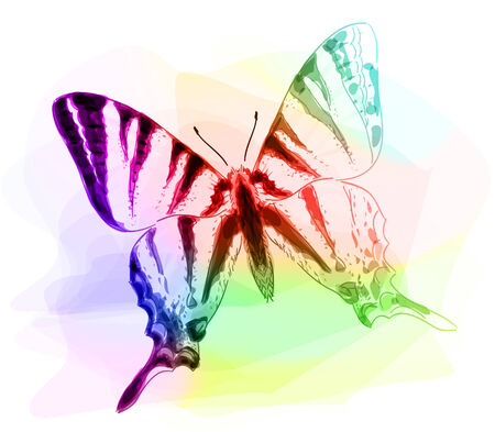 inachis: Butterfly. Iridescen colours. Unfinished Watercolor drawing imitation. Vector illustration. Illustration