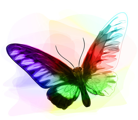 Butterfly. Iridescen colours. Unfinished Watercolor drawing imitation. Vector illustration. Illustration