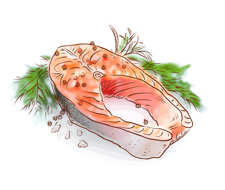 stake: Salmon stake. Watercolor imitation with sketch. Vector illustration.