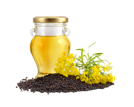 Rapeseed oil with seeds and flowers. Isolated.