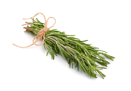 Rosemary bunch with a jute rope isolated