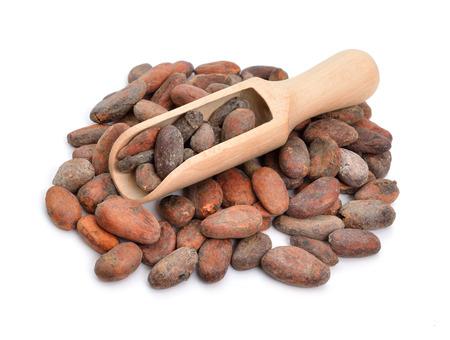 cacao: Los granos de cacao antes de asado. Aislado en el fondo blanco. Foto de archivo
