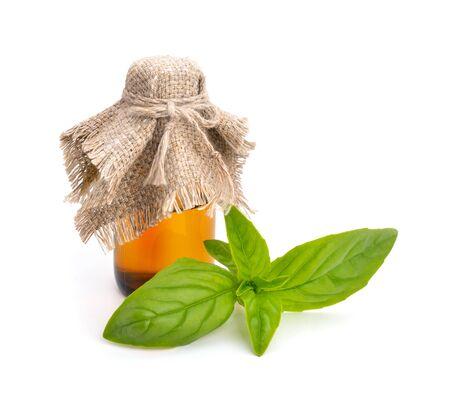 albahaca: El aceite esencial de albahaca aislado sobre fondo blanco. Foto de archivo
