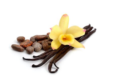 Peulen van de vanille en cacaobonen met een gele orchidee. Geïsoleerd op een witte achtergrond. Stockfoto