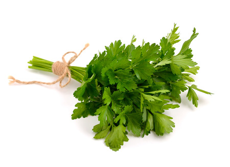 Bunch of Parsley. Isolated.