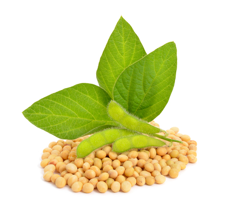 Green soy pods with leaves and seeds. Isolated on white backgraund.