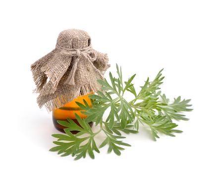 ajenjo: Artemisia absinthium con una botella farmacéutica. Aislado en el fondo blanco. Foto de archivo