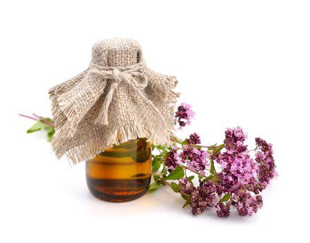 Oregano flowers with pharmaceutical bottle. Isolated. Stock Photo
