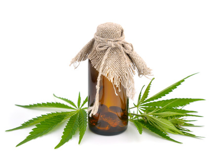 Foliage of hemp with pharmaceutical bottle. Isolated.