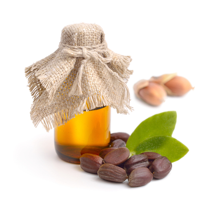 huile: Jojoba (Simmondsia chinensis) laisse, les graines avec de l'huile. Isolé sur cep beckground.